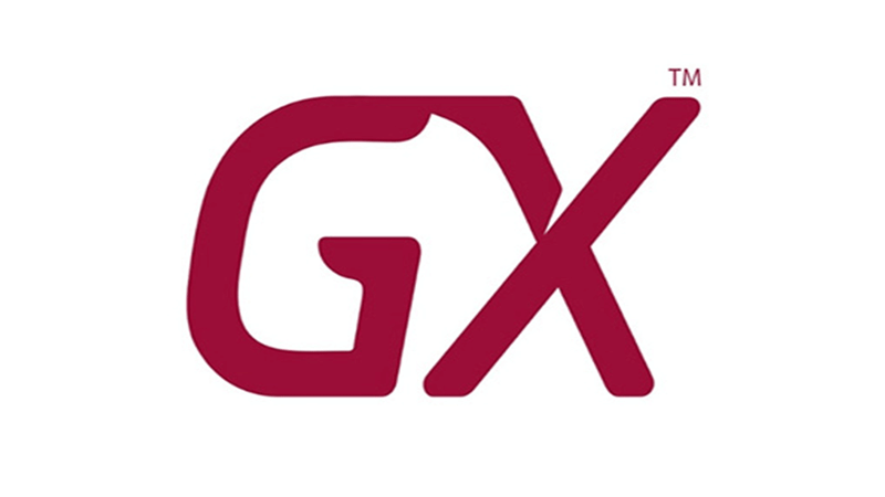 Logo-genexus-blog